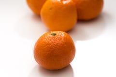 åkerbruka produktgrönsaker för ny marknad Royaltyfria Foton
