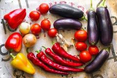 åkerbruka produktgrönsaker för ny marknad Royaltyfri Bild