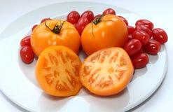 åkerbruka produktgrönsaker för ny marknad Tomater arkivfoto
