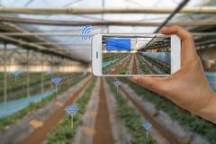 Åkerbrukt begrepp för smart lantbruk genom att använda internet av saker, IOT, Royaltyfri Bild