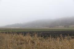 Åkerbrukt fält Fotografering för Bildbyråer