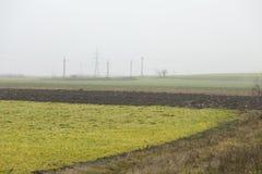 Åkerbrukt fält Royaltyfri Bild
