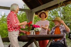 Åldrades kvinnor som bevattnar blommor medan manklippfilialer arkivfoto