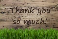 Åldrig träbakgrund, Gras, text tackar dig så mycket Royaltyfria Foton