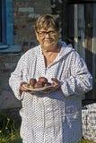 Åldrig trädgårdsmästare med potatisar Royaltyfri Bild