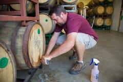 Åldriga öl för provtagning- och avsmakningbourbontrumma Arkivfoton