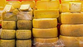 Åldriga och nya ostar på försäljning i den italienska ställningen Arkivfoton