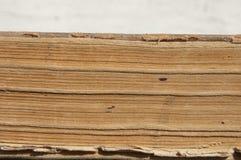 Åldriga sidor av boken. Closeup. Arkivfoton
