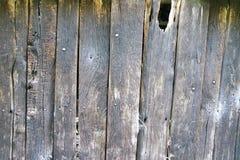 Åldriga träplankor för brunn - vägg Royaltyfri Fotografi