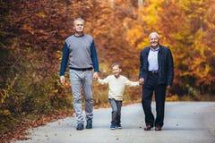 Åldringen avlar den vuxna sonen och sonsonen ut för en gå i parkera royaltyfria foton