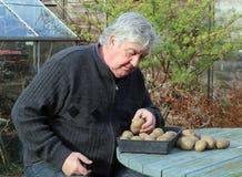 Åldringen bemannar med kärnar ur potatisar. Arkivbilder