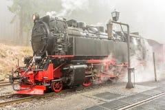 Ånga ångalokomotivet i en skog i dimma royaltyfria foton