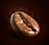 Ånga kaffebönan Royaltyfria Bilder