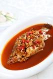Ånga kinesisk mat, fisk Arkivbild