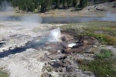 Ånga parkerar den färgrika calderaen på yellowstone Arkivfoto