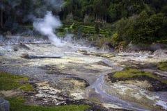 Ånga resningen från geotermiska Hot Springs i Furnas, Azores Royaltyfria Bilder