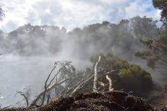 Ånga sjö Nya Zeeland Arkivbilder