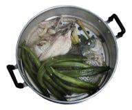 ångad fisk Royaltyfri Foto