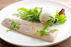 Ångad fiskfilé med ägget och sallad Royaltyfria Bilder