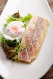Ångad fiskfilé med ägget och sallad Arkivfoton