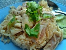 Ångad höna med rice Fotografering för Bildbyråer