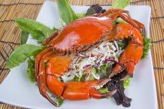 Ångad krabba Royaltyfri Bild