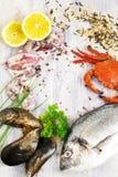 Ångad krabba med den nya citronen och aromatiska örter på träbackg Arkivbild