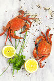 Ångad krabba med den nya citronen och aromatiska örter på träbackg Royaltyfri Fotografi