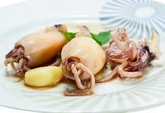 ångad tioarmad bläckfisk Royaltyfri Fotografi