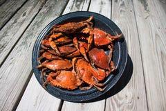 Ångade blåa krabbor på en platta Arkivbild
