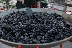 Ångade Black Sea musslor i sås med rosmarin och vitlök Arkivfoton