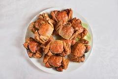 Ångade kinesiska håriga krabbor Royaltyfri Fotografi