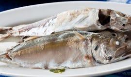 ångade mackerels Arkivfoto