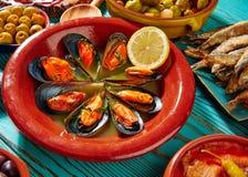 Ångade musslor för Tapasmejillonesal dunst Arkivbilder