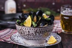 Ångade musslor i öl Royaltyfria Bilder