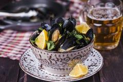Ångade musslor i öl Arkivfoton