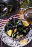 Ångade musslor i öl Royaltyfri Fotografi