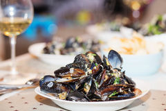 Ångade musslor i ostsås Royaltyfri Foto