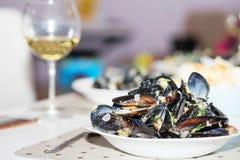 Ångade musslor i ostsås Royaltyfri Fotografi