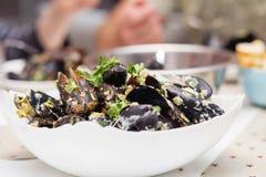 Ångade musslor i ostsås Arkivbild