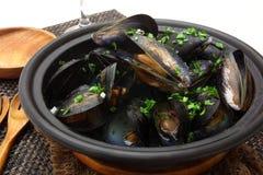 Ångade musslor i panna med vin fotografering för bildbyråer