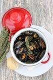 Ångade musslor i vitt vin Royaltyfria Foton