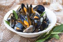 Ångade musslor med citronen för lunch Royaltyfri Fotografi