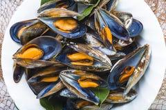 Ångade musslor med citronen för lunch Arkivfoton