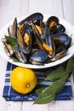 Ångade musslor med citronen för lunch Arkivbilder