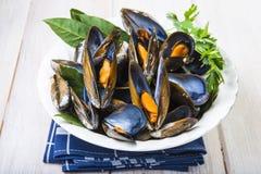 Ångade musslor med citronen för lunch Fotografering för Bildbyråer