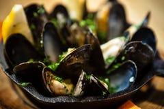 Ångade musslor med dressingen Royaltyfri Foto