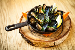 Ångade musslor med dressingen Arkivfoton