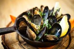 Ångade musslor med dressingen Fotografering för Bildbyråer