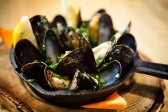 Ångade musslor med dressingen Arkivfoto